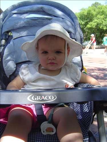 St Louis Zoo. DSC03875-June 14 2005-02.19.28 PM.JPG. Uploaded by Jessica Hoffmann on 6/24/2005.