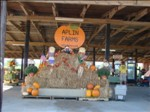 Pumkin Patch 2007